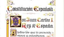 Constitucion 2013